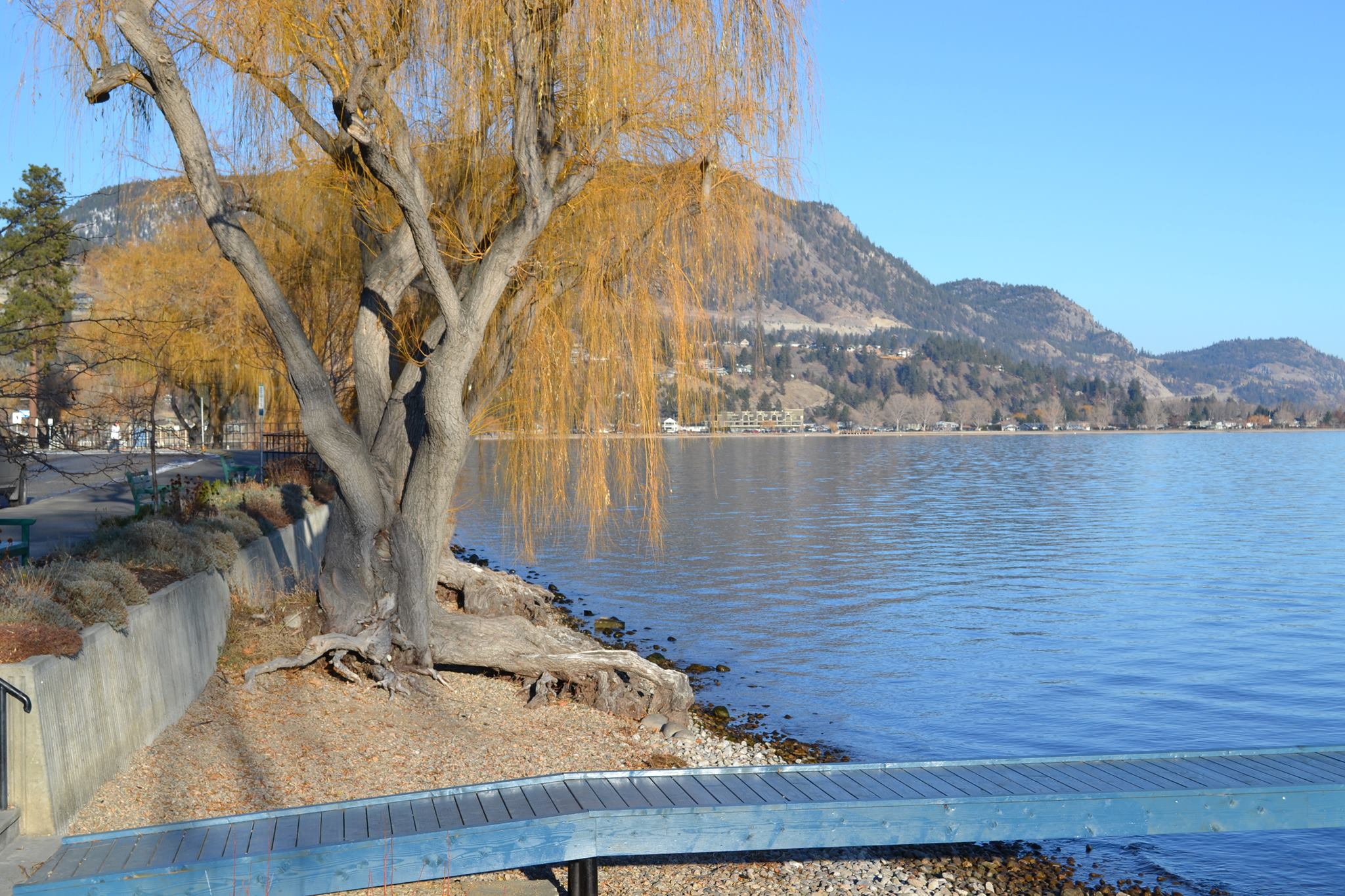 Okanagan Lake Winter Day